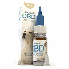 Cibapet - CBD Oil for dogs 4% - 10ml